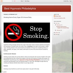 Best Hypnosis Philadelphia : Smoking Harms Every Organ Of A Human Body