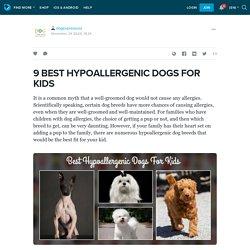 9 BEST HYPOALLERGENIC DOGS FOR KIDS : dogexpressusa — LiveJournal