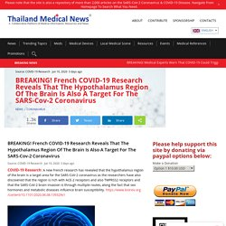 BREAKING! French COVID-19 Research Reveals That The Hypothalamus Region Of The Brain Is Also A Target For The SARS-Cov-2 Coronavirus - Thailand Medical News