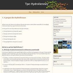 I. A propos des hydroliennes - Tpe-Hydroliennes