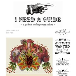 I need a guide: travis bedel