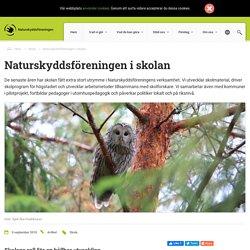 Naturskyddsföreningen i skolan