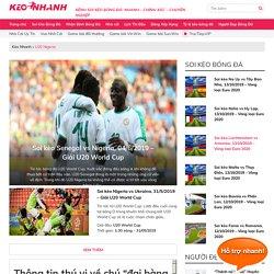 Đội tuyển U20 Nigeria: Thông tin tổng hợp về U20 Nigeria