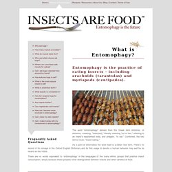 IAF What is Entomophagy?