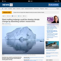 Giant melting icebergs could be slowing climate change by absorbing carbon: researchers