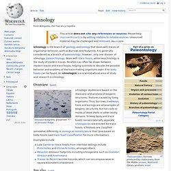 Ichnology