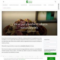 Ideas para ambientadores naturales DIY