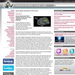 How ideas spread in the brain