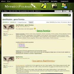 Identification : genre Formica : Documentation pour Identification et Taxonomie des Fourmis