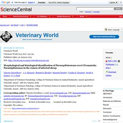 VETERINARY WORLD 30/01/15 Morphological and histological identification of Paramphistomum cervi (Trematoda: Paramiphistoma) in the rumen of infected sheep