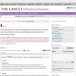 THE LANCET 05/02/16 Identification of a novel pathogenic Borrelia species causing Lyme borreliosis with unusually high spirochaetaemia: a descriptive study
