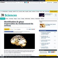 Identification de gènes responsables du vieillissement du cerveau