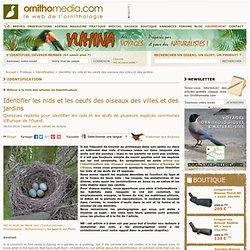 Identifier les nids et les oeufs des oiseaux des villes et des jardins