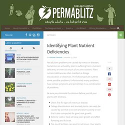 Identifying Plant Nutrient Deficiencies - Permablitz Melbourne
