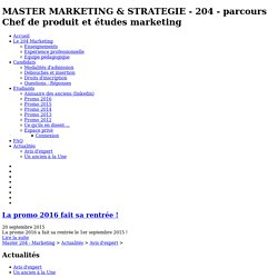 MASTER MARKETING & STRATEGIE - 204 - parcours Chef de produit et études marketing