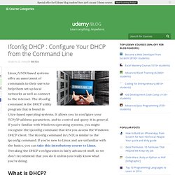 Ifconfig dhcp : Configure your DHCP from the command line
