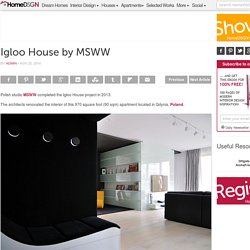 Igloo House by MSWW