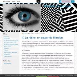 II) La rétine, un acteur de l'illusion
