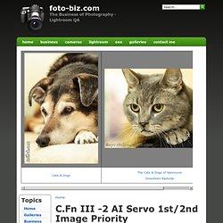 C.Fn III -2 AI Servo 1st/2nd Image Priority