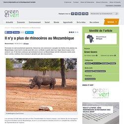 Il n'y a plus de rhinocéros au Mozambique