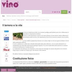 Il terreno e la vite - Vinoway.com