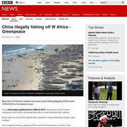 China illegally fishing off W Africa - Greenpeace - BBC News