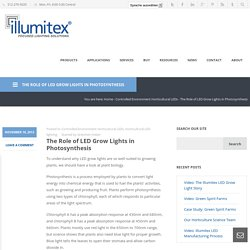 The Role of Illumitex LED Grow Lights in Photosynthesis
