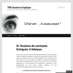 III- Illusions de contraste: Échiquier d'Adelson.