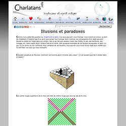 Illusions visuelles et paradoxes