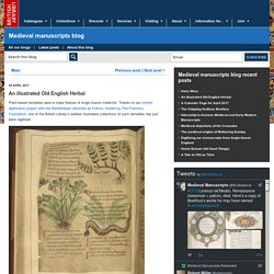 An illustrated Old English Herbal - Medieval manuscripts blog