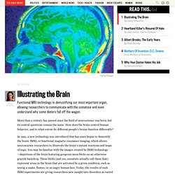 Illustrating the Brain