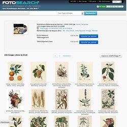 Illustrations botaniques anciennes : 1640-1900 - Banque d'Illustrations et de Cliparts. Achetez des Images Cliparts Libres de Droits sur Disque par Visual Language.