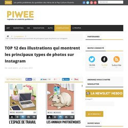TOP 12 des illustrations qui montrent les principaux types de photos sur Instagram