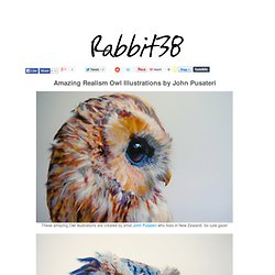 Amazing Realism Owl Illustrations by John Pusateri
