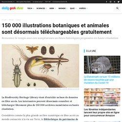 150 000 illustrations botaniques et animales sont désormais téléchargeables gratuitement