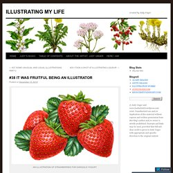 #38 IT WAS FRUITFUL BEING AN ILLUSTRATOR