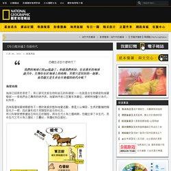 【每日酷知識】恐龍時代 – 國家地理雜誌-中文網
