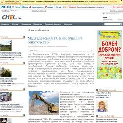 Медведевский ГОК наступил на банкротство - Новость бизнеса