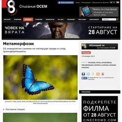 Метаморфози - Списание Осем