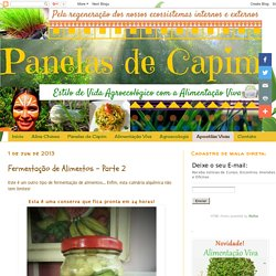 fermentacao-de-alimentos-parte-2.html#