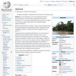 Амазон — Википедија, слободна енциклопедија