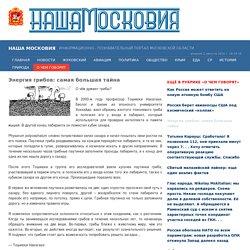 Портал Наша Московия