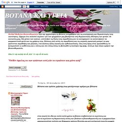 ΒΟΤΑΝΑ ΚΑΙ ΥΓΕΙΑ: Βότανα και τρόποι χρήσης:πως φτιάχνουμε κρέμες με βότανα