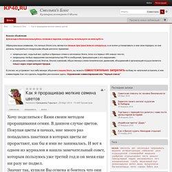 Как я проращиваю мелкие семена цветов - Блоги Калужского перекрестка