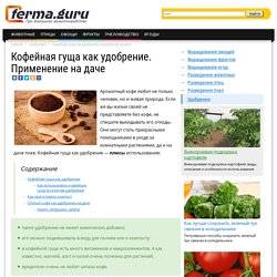Использование кофейной гущи в качестве удобрения, жмых спитого кофе для комнатных растений