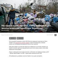 Янтарь, вырубка леса, мусор, Донбасс и Днепр. Крупнейшие экологические проблемы Украины