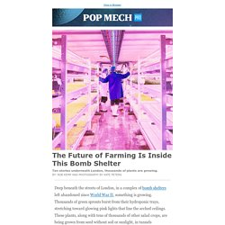 The Future of Farming Is Inside This Bomb Shelter