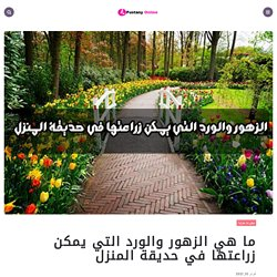 ما هي الزهور والورد التي يمكن زراعتها في حديقة المنزل