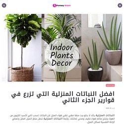 افضل النباتات المنزلية التي تزرع في قوارير الجزء الثاني