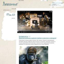 Мужское мнение о мужике-тряпке и насилии к женщине » Сайт приколов - Безумно.ру